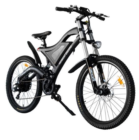 more than bikes  u2013 ebike  ebike winnipeg  electric scooters